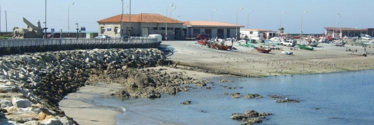 Puerto pesquero y lonja
