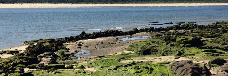Pesqueira playa o Muíño